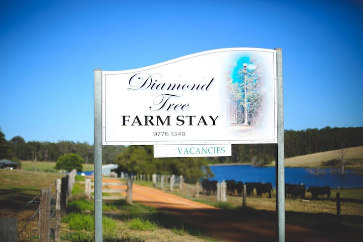 Diamond Tree Farm House - Manjimup - Casa