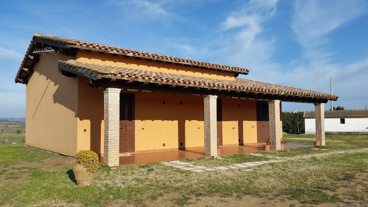 Bilocale di Recente costruzione a Pescia Romana
