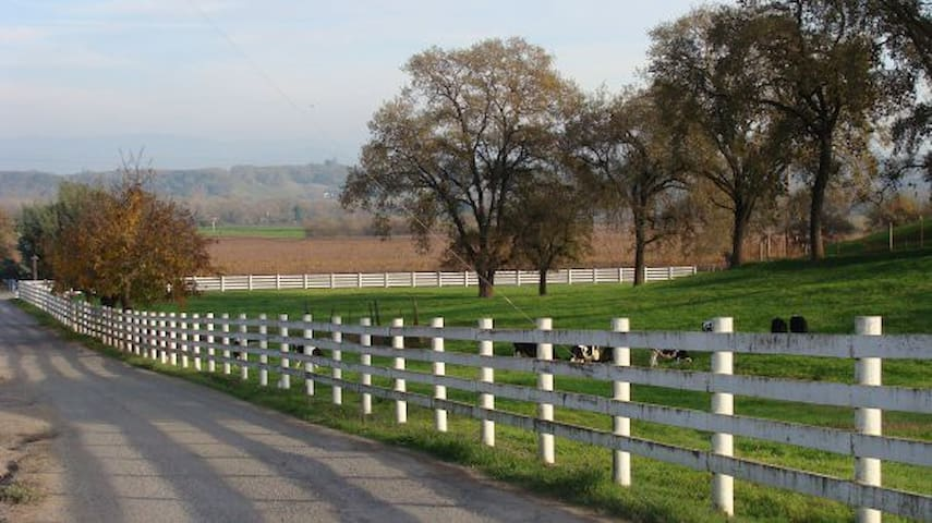 Wine Country Ranch Home Wine Tour Destination