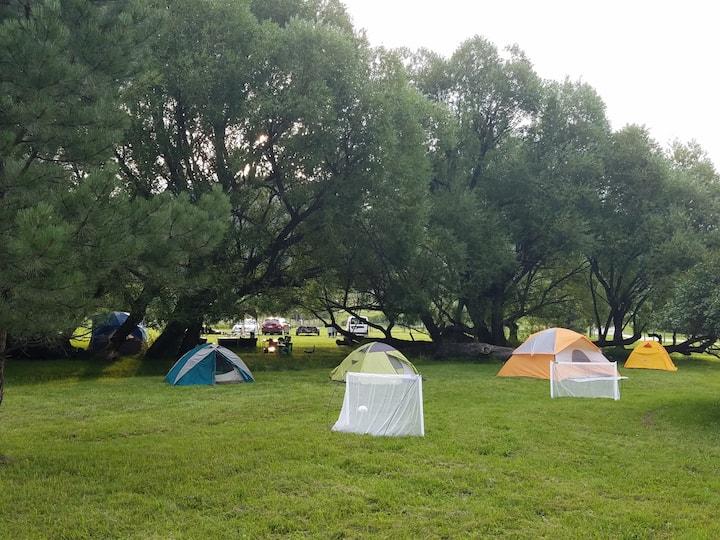 Plenty Star Ranch - Tent Site - No 1 of 8