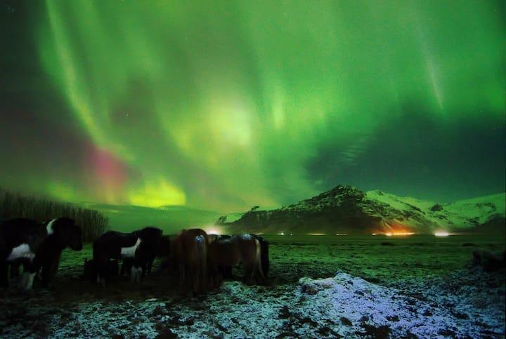 Great View Eyjafjallajökull(Queen)