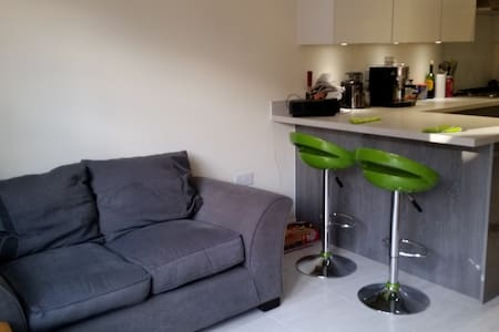 Sunny Single Room opposite Beautiful Park - High Wycombe - Townhouse