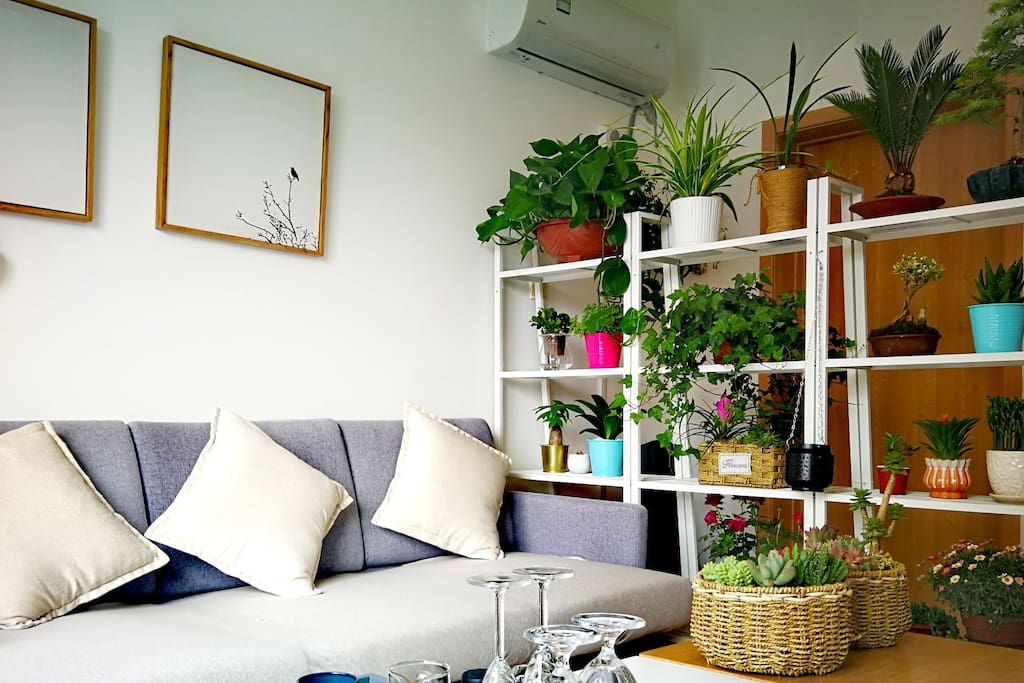 客厅也是公共区域,采光极好,整个家里也是花费最多精力打造的一个室内休闲区域,家里大部分花草都集聚在这里,一应物品配备的很是齐全。 在这个区域无论是工作、看书、喝茶、赏花、或是享受休闲静时光都是极好的。