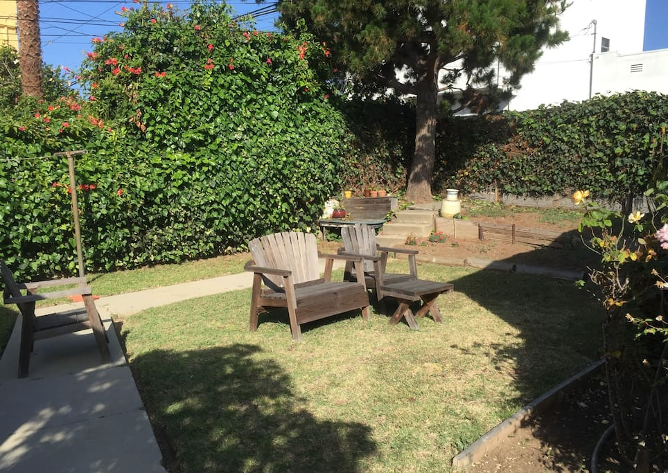 The shared backyard.