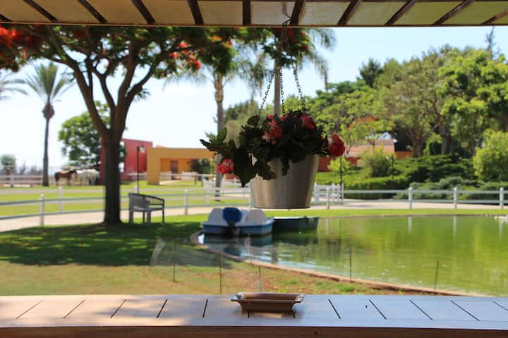 Al-Yasmine Guesthouse, Escape to Tyre, South Leb