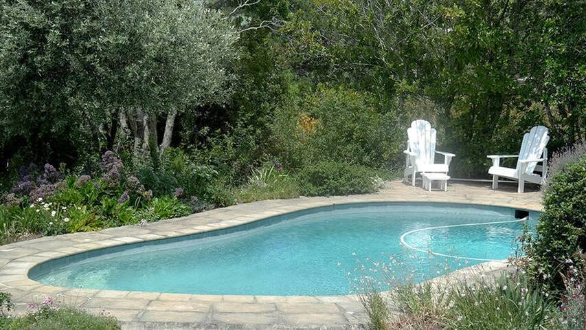 Lovely pool in garden area