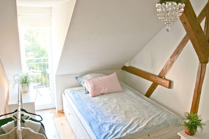 Cosy and quite room with balcony near city center - Freiburg im Breisgau
