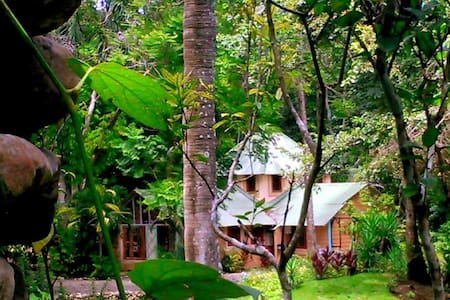 JUNGLE DREAM: La Casa de la Canela - Puerto Plata - Natur-Lodge