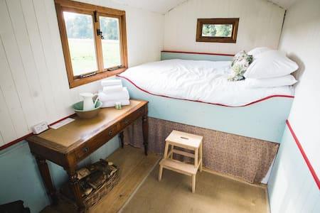 Pine - Shep Hut - Slane