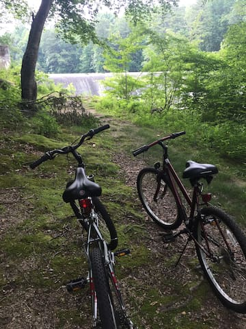 There is a forested running and biking trail  just a block from the house.