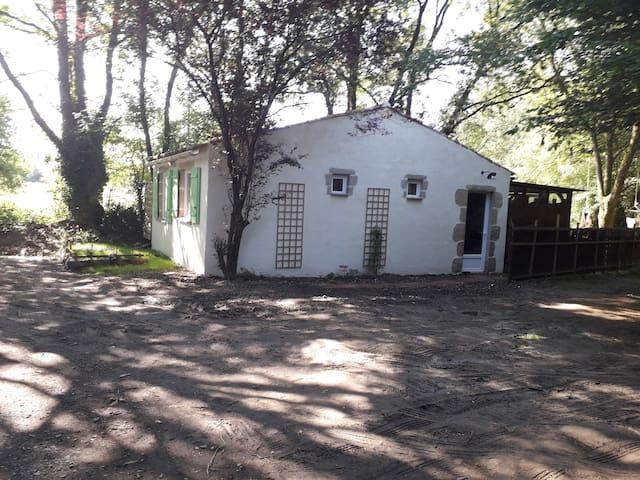 la maison sous les arbres avec jacuzzi