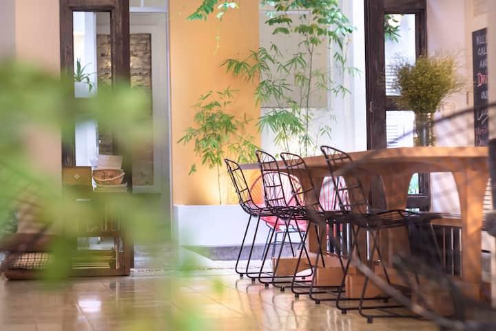 Hostal Avec Terrasse et WIFI dans le Centre-Ville