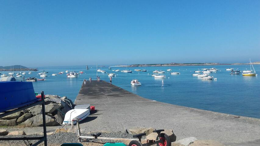 Le petit port de l' ile- grande