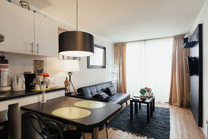 Spectacular and cozy apartment !! - Santiago - Byt