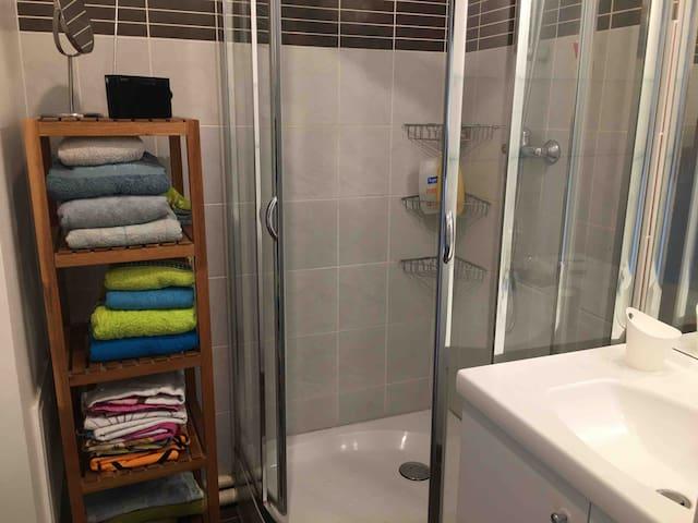 Salle de bain n°2 avec douche.
