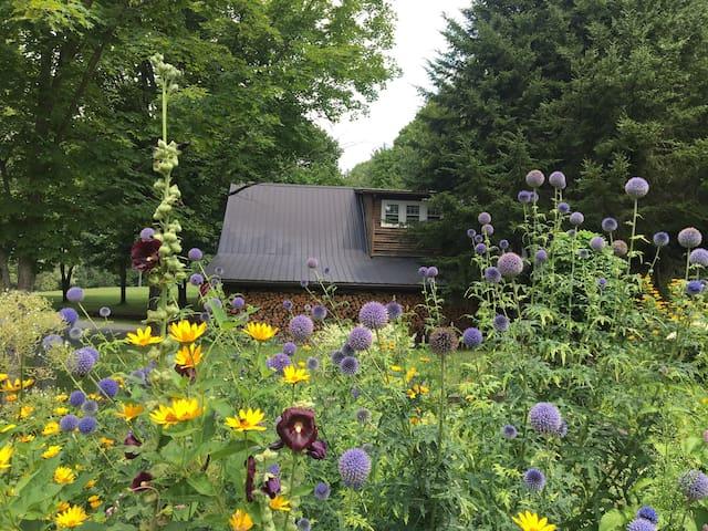 Meadow View. 35 acres outside your door!
