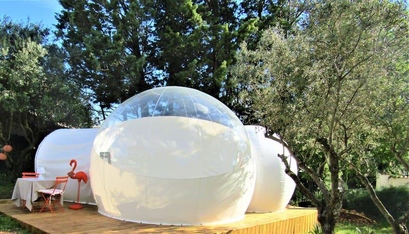 Bubble Dream Logement insolite en pleine nature