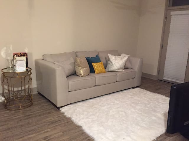 Downtown Chic Apt near UT & local fun - Knoxville - Daire