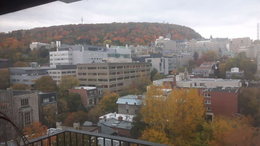 Fantastic Apartment Centrally Located in Montreal!