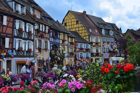 Les bateliers Petite venise Colmar - Colmar