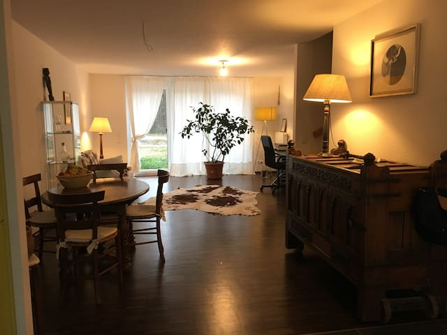 Haus am Waldrand - Grenzach-Wyhlen - House