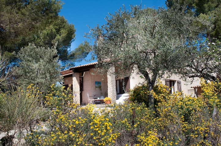 Welcome in Provence ! - Saint-Martin-de-la-Brasque - Rumah