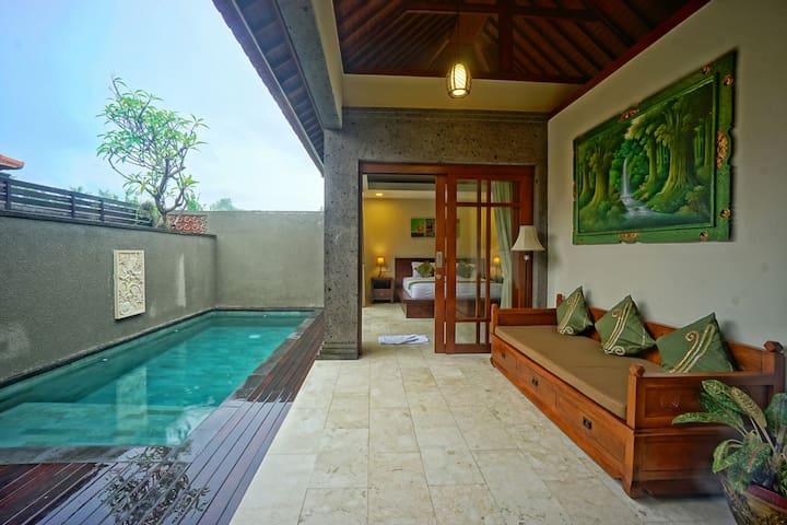 1BR Cozy villa w/ Private Pool in the Rice Field
