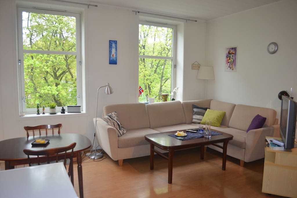 Charming and large living room with big and comfy sofa TV. Beautiful view to the park, Alexander Kiellands plass