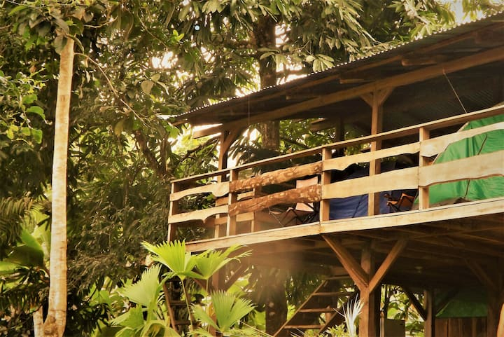 Finca Fila Maya Camping Corcovado