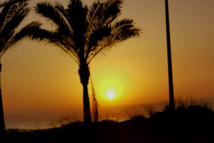 Estudio 25 metros playa