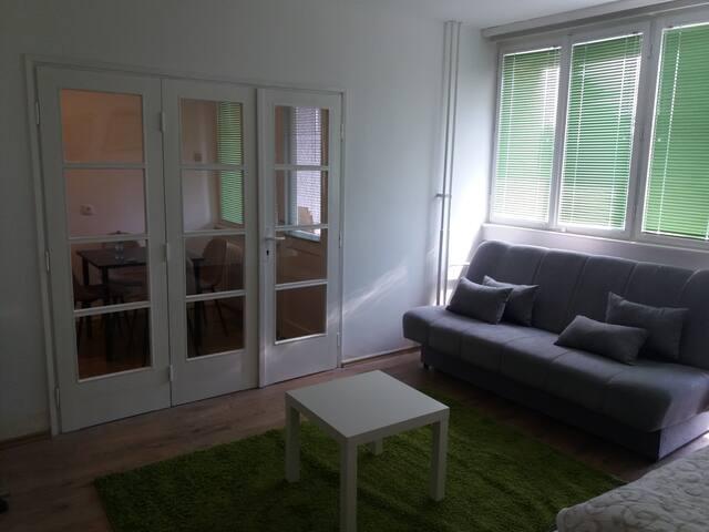 Apartment with Loggia