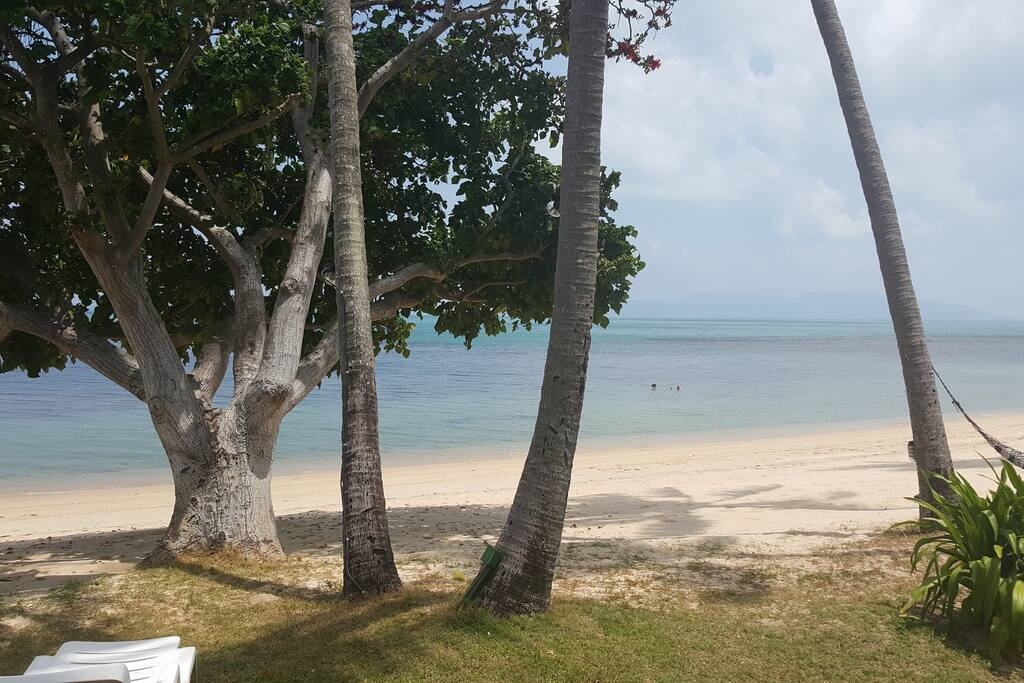 The beach....with views to Koh Phagnan....