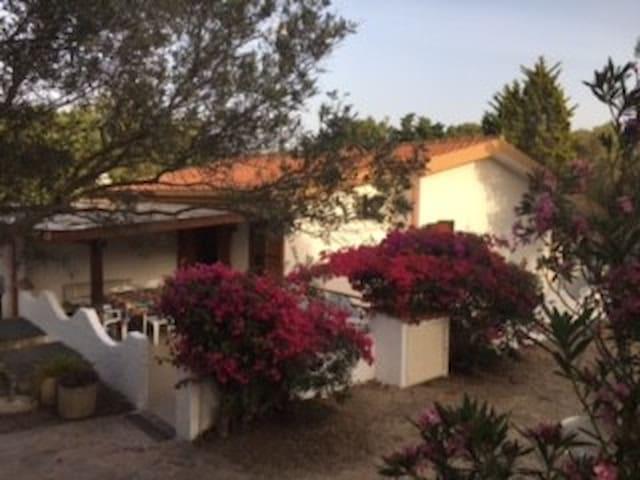 Casa Teresa, Porto Pino, via Porto Pineddu 12 - Sant'Anna arresi - House