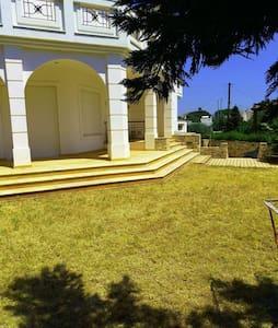 Villa Dionysos between Port and airport