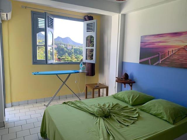 Grande chambre climatisée, lit double 1,40 x 1,90 ( bonne literie) , chevet , petite table d'appoint , table et fer à repasser .