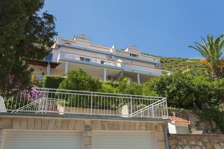 Apartment Violić