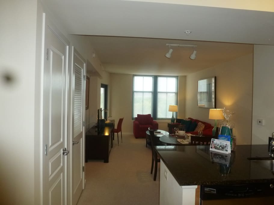 Luxury Furnished 1 Bedroom Arlington Apartment