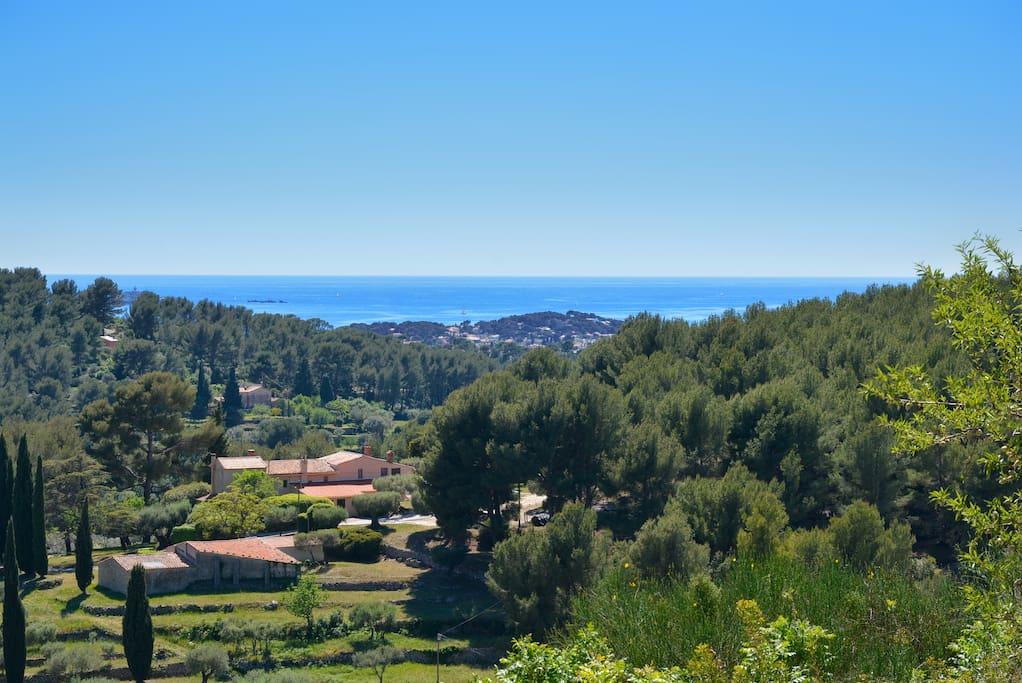 La vue sur la mer et la campagne plantée de cyprès florentins