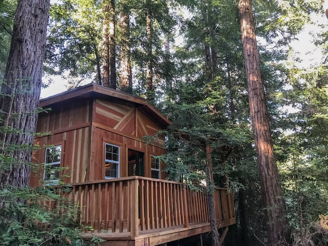 Cabin at Juju Paradise:Santa Cruz Redwoods Retreat