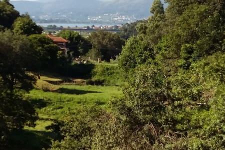 40mts de terraza, vistas magníficas, tranquilidad - O Rosal