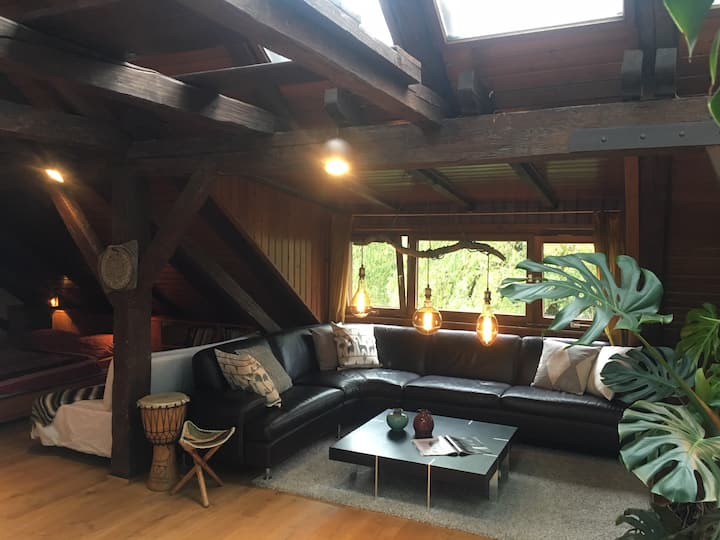 Wunderschönes Atelier- Loft unterm Dach - Studio