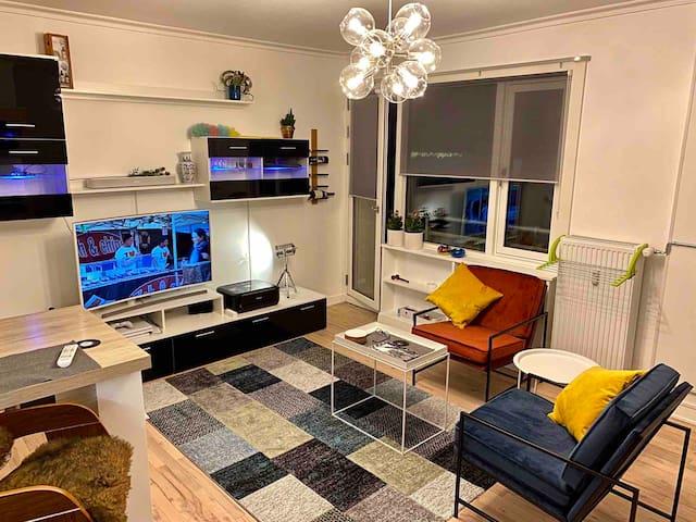 Cozy luxury Scandinavian style flat near city cntr