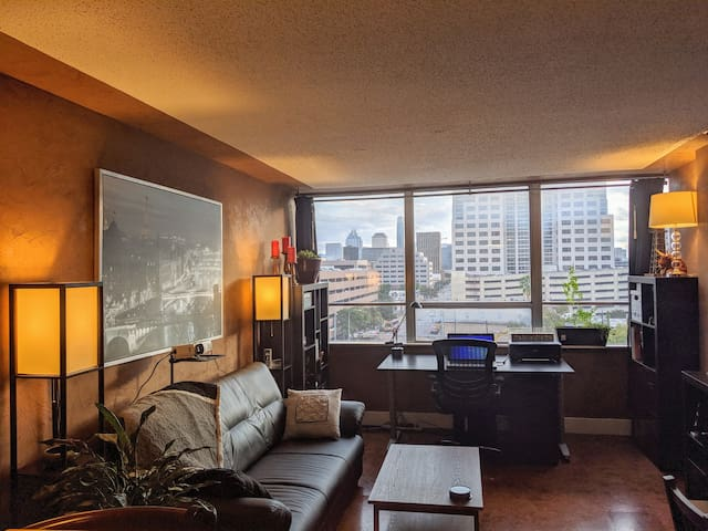 Spacious downtown condo near UT w/ great views