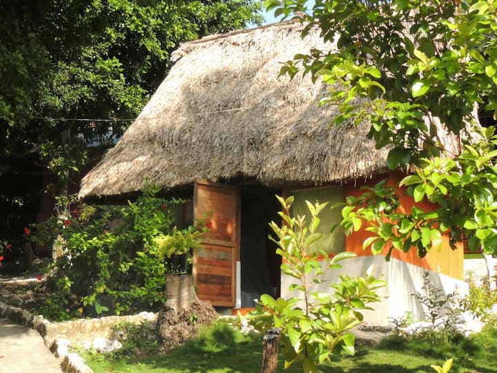 Mayan Herbalism Class  lodging and Meals