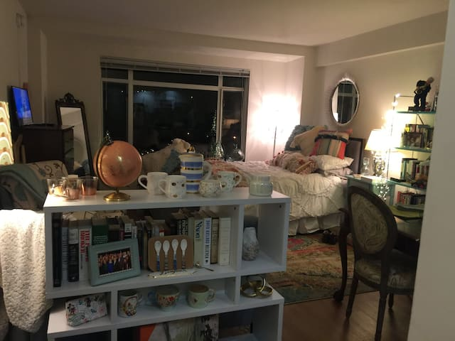 Conveniently Located Studio NW DC Apartment