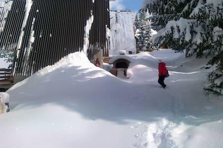 Family holiday home on the Mountain Vlasic Travnik - Šišava