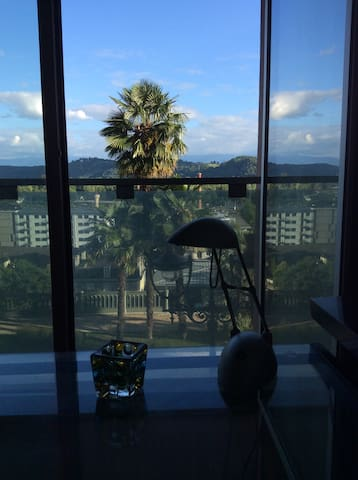 Studio with best location and view - Pau - Lejlighed