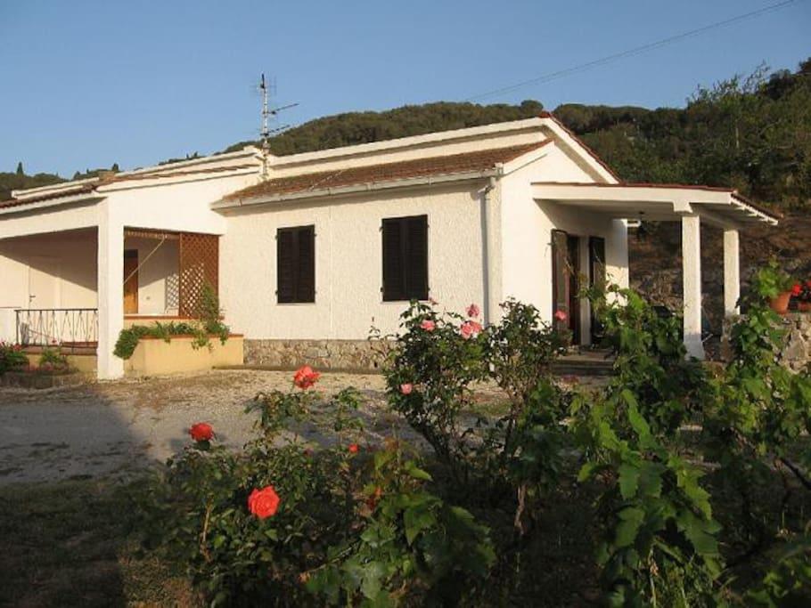 Esterno Bilocale con giardino.