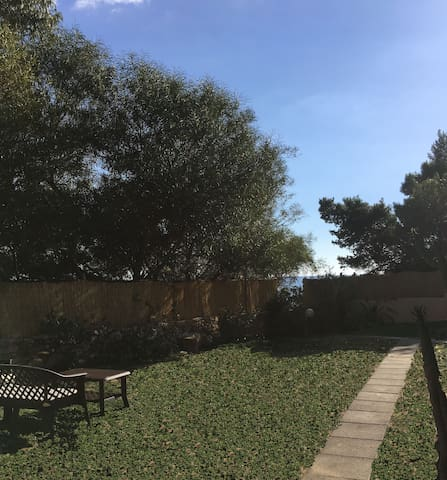 Fronte giardino - Front garden