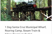 Happy to book your tour to Santa Cruz Pier, Roaming Camp/Ancient Forest,Gilroy Designer Outlet- Departure: Wednesday, Friday,Sunday at 9:00 AM